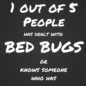 1 in 5 affected by bed bugs